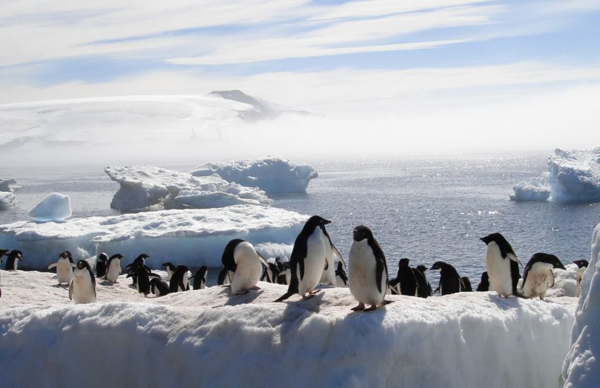 10 Interesting Facts About Antarctica
